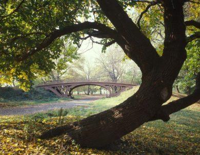 Module 2: Architecture et développement de l'arbre